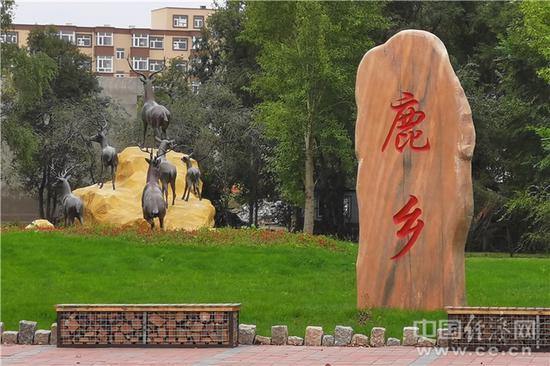 鹿乡镇。经济日报-中国经济网记者宋雅静/摄