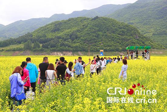 游客在油菜花丛中赏花拍照