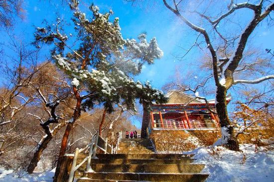 树上的落雪给古刹石阶增添无限韵味