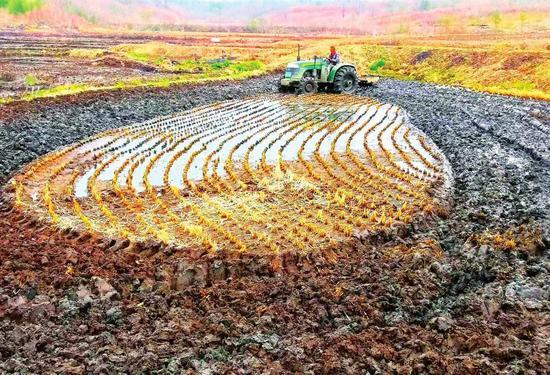 在舒兰市金马镇新立村,村民们早早起来进行翻地、施肥。