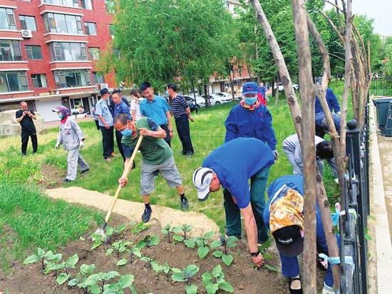 调查:小区公共绿化区域岂能变成
