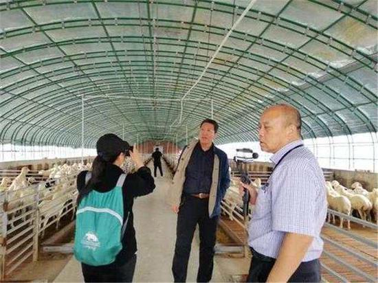 在村里的羊场,张赤旗(中)向记者讲述产业扶贫的希望。