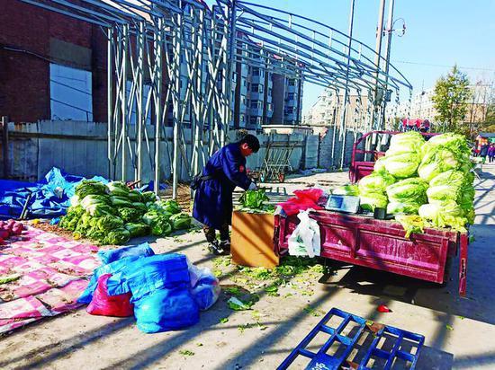 白菜摊前,白菜堆在地上和车上