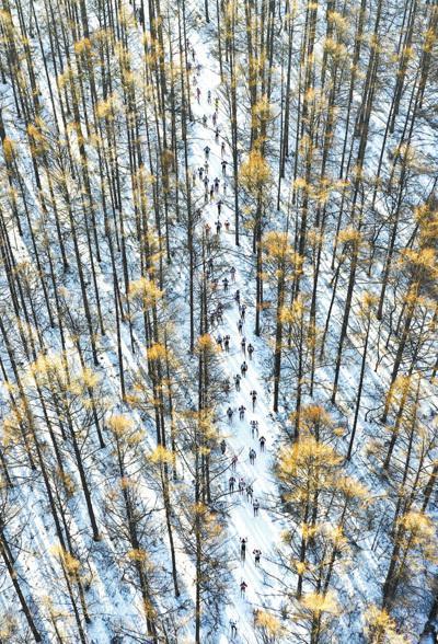 图为当日,参加第十九届中国长春净月潭瓦萨国际越野滑雪赛的选手在比赛中(无人机照片)。新华社记者 许 畅摄