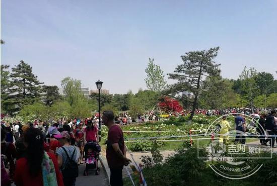 长春市牡丹园内游客满满