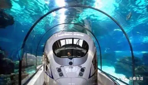还记得《疯狂动物城》中小朱迪坐火车进城的片段吗?