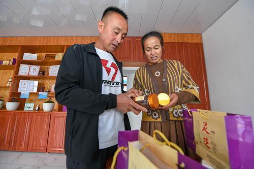 9月25日,在吉林省白山市靖宇县大北山村,高秀虎(左)与妻子商量灵芝孢子粉包装改进方案。新华社记者 张楠 摄