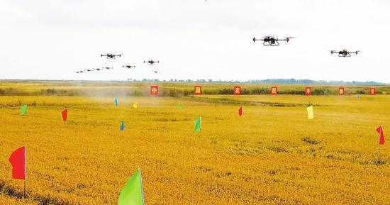 无人机正在进行植保作业。