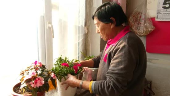 临江市:移民村里的幸福生活