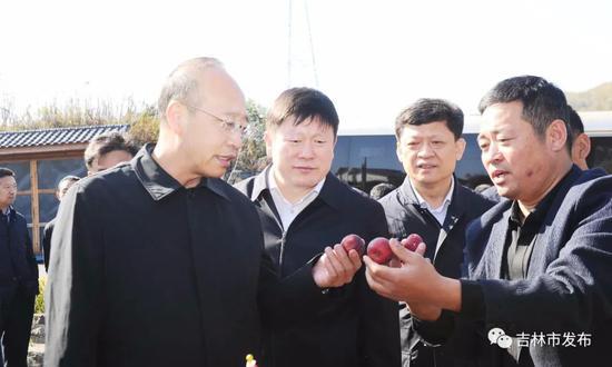 吉林省委常委、常务副省长吴靖平(左一)在吉林市市长贺志亮(左二)的陪同下,来到蛟河市拉法街道海青村检查秋收情况。