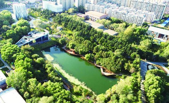 俯瞰长春水文化生态园。贾春文 摄