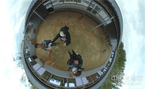 在鹿舍内采访64岁养殖工杨玉山。经济日报-中国经济网记者宋雅静/摄