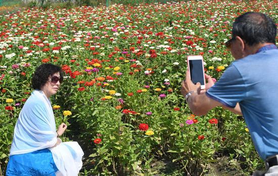 9月4日,游客在长春市莲花山生态旅游度假区花田里拍照留念。