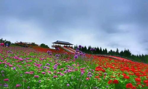 龙井市2018年旅游产业发展取得显著成效