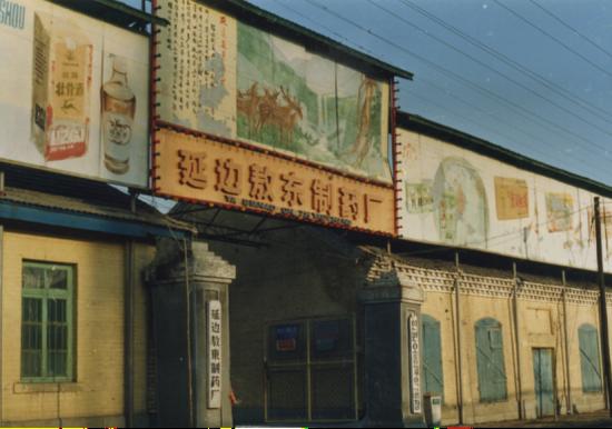 (1981年创办敖东制药厂)