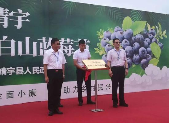 三道湖镇蓝莓产业信息中心揭牌