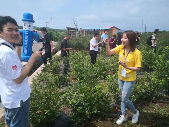 吉林省驻村第一书记协会网红直播团队进行直播