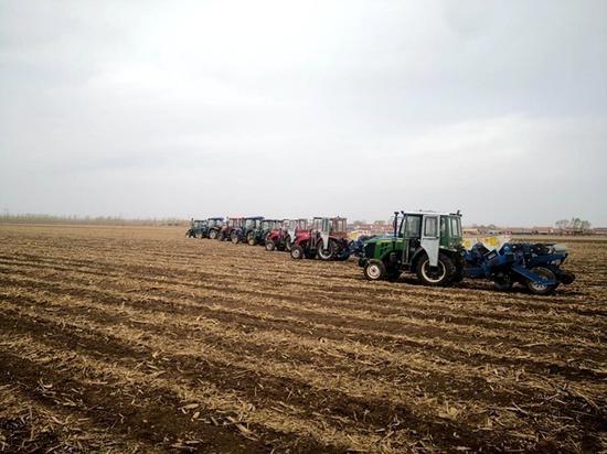 榆树市增益农业机械种植专业合作社8台大型播种机播种 马占有供图