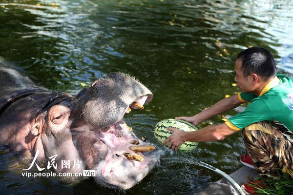 重庆:动物避暑有高招