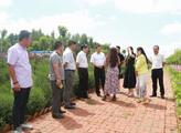 汪清县公安局交警大队开展助教宣传活动
