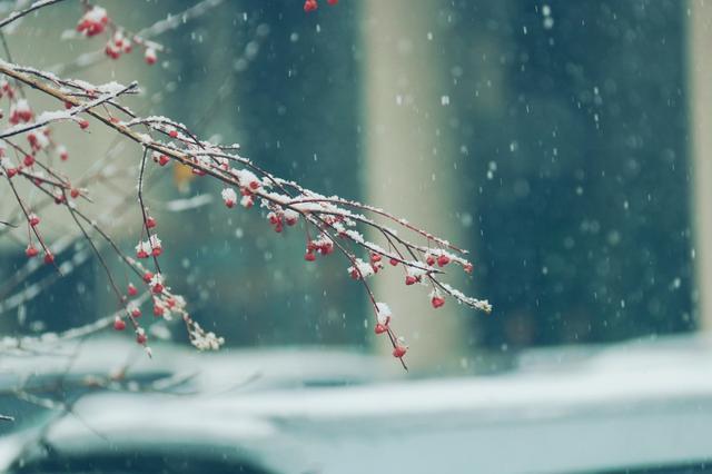 长春迎秋末初冬首场降雪