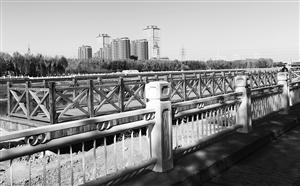 """伊通河畔依水而建的木质栈道是""""水边绿道""""重要组成部分,既方便人们通行,又是一座观景台,游人可以流连之上,领略美景。 贾春文 摄"""