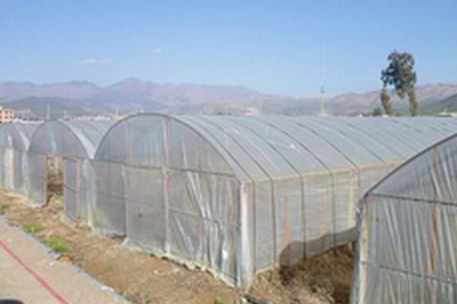 加快设施园艺发展步伐 吉林省确定棚室补助资金标准