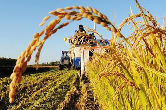 国办明确跨省补充耕地金标准 吉林省为四档地区