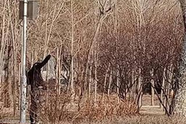 长春一男子公园内打鸟 工作人员对其劝阻批评教育