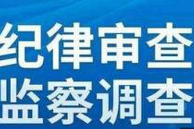 吉电股份二道江发电公司总经理付继光接受调查