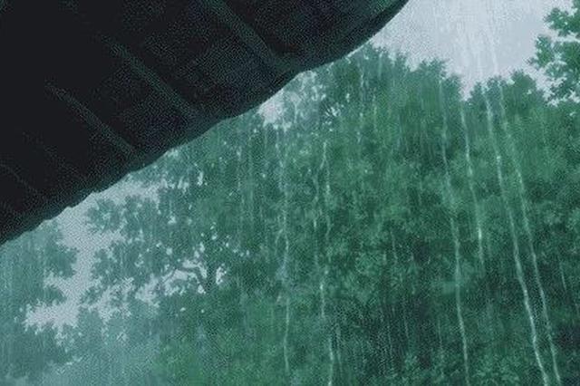 长春市民请注意今天下午或有大到暴雨 建议错峰下班