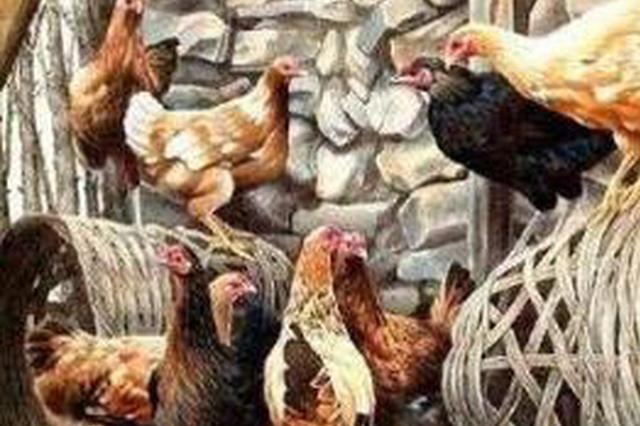 18岁少年因饥饿难忍 伙同他人抢劫36只鸡潜逃20年