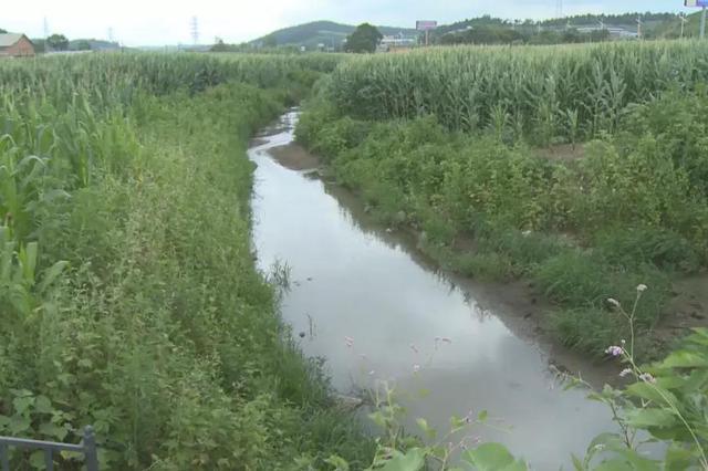 生态环保督察组通报辽河流域水污染防治突出问题