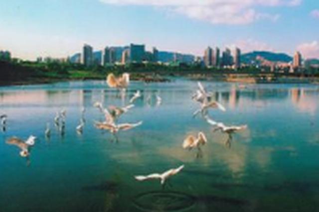 吉林省生态环境保护督察组向长春市交办第10批信访件