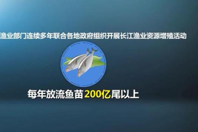 """长江渔业资源告急:""""四大家鱼""""减损90%以上"""
