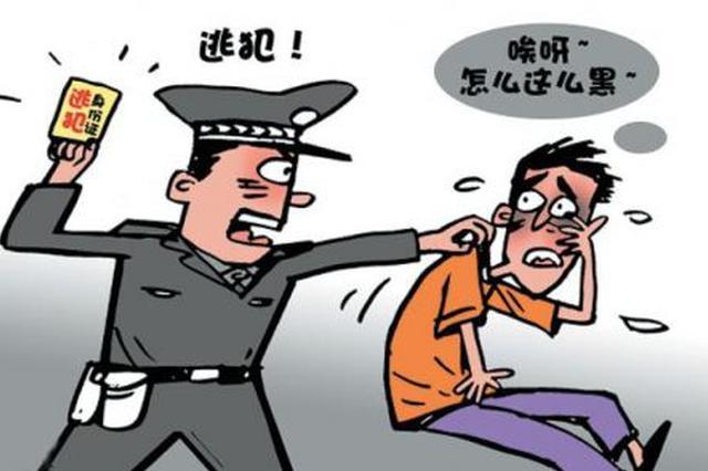 吉林省警方向韩国警察厅移交11名韩国籍逃犯