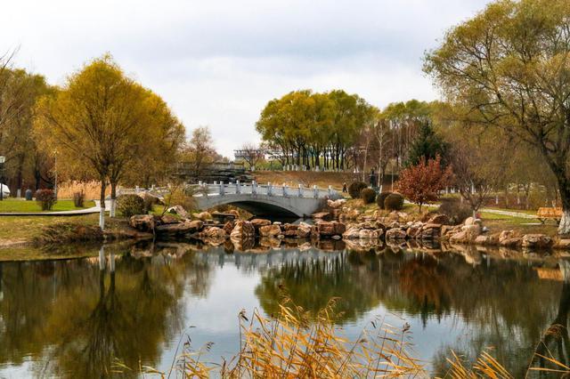 微阳下乔木 远色隐秋山 雕塑公园的秋色