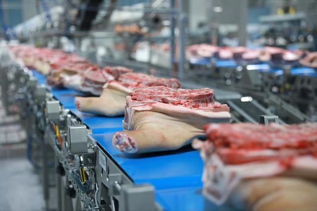 吉林省白山市浑江区发生野猪非洲猪瘟疫情
