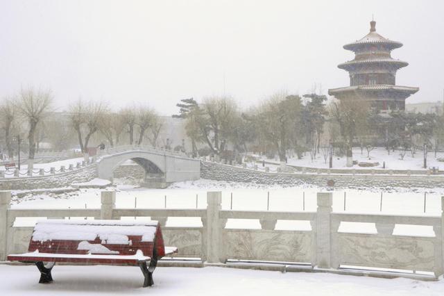 飘雪中的长春劳动公园 景色让人流连忘返