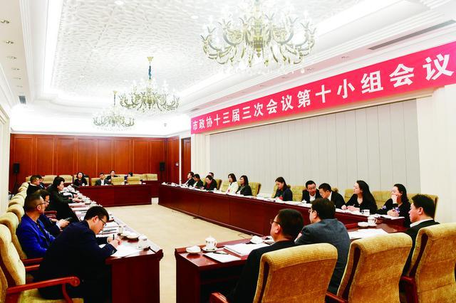 长春市政协委员分组讨论政府工作报告
