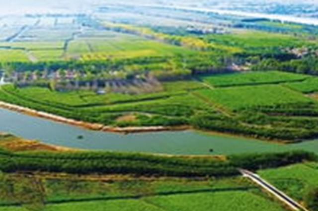 吉林省启动中西部农田防护林网修复完善工程