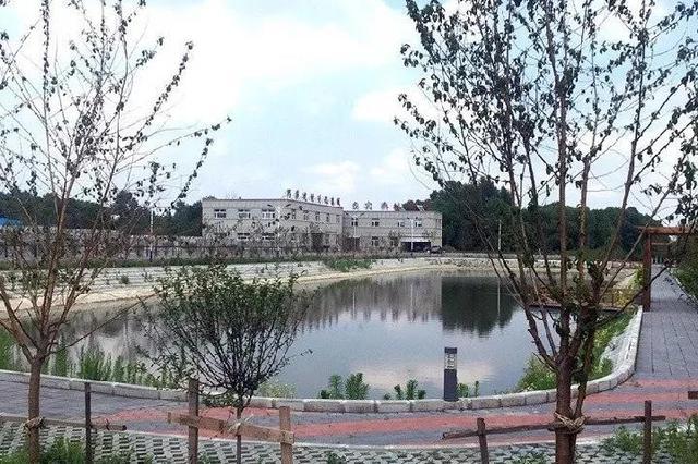 新华社播发稿件点赞九台区土地制度改革
