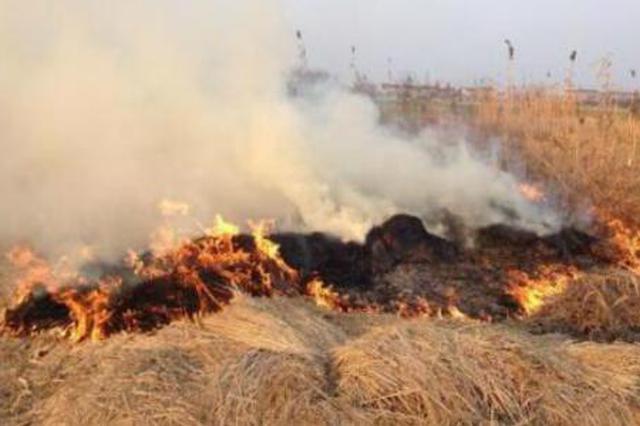 吉林省人大常委会来长开展执法检查 加强秸秆禁烧
