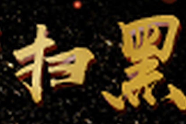 辉南县法院宣判庄树林、庄德龙、韩海江寻衅滋事案