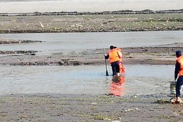 延吉局子桥东侧河中央一男子被困 消防紧急施救