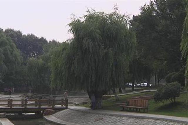 """本周长春市依旧""""雨一直下""""或出现短时强降水"""