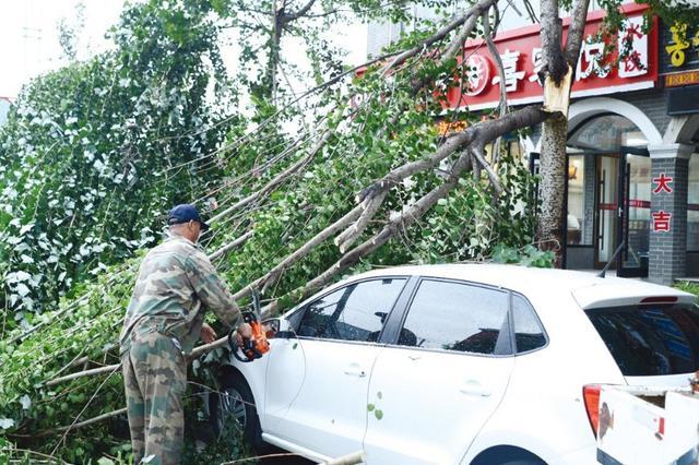7月18日延吉风急雨骤 城区30余处树折腰!