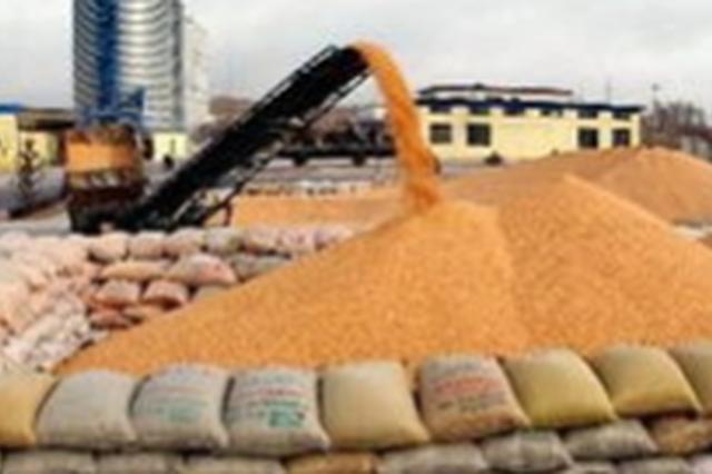 长春市粮食产量稳定在90亿公斤阶段性水平