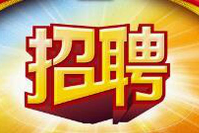 """长春市事业单位招聘中 最热门岗位426个人""""抢"""""""
