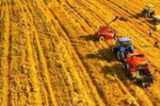 长春市政协调研农村土地托管经营情况